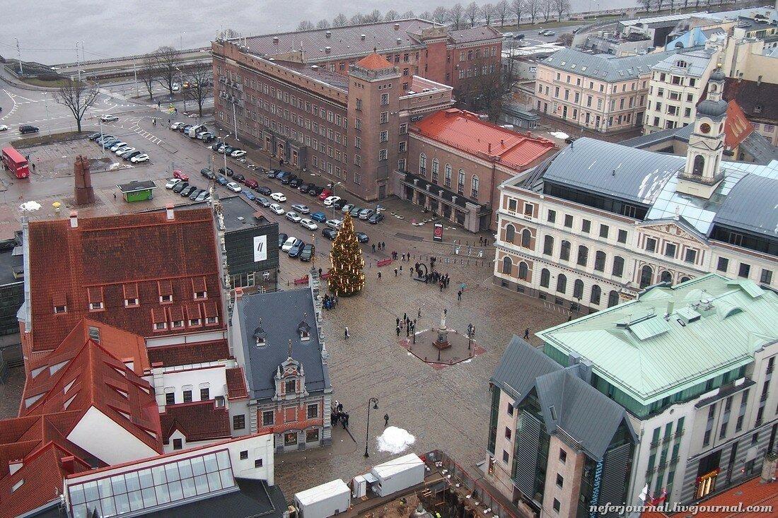 Где была установлена первая в мире рождественская елка?