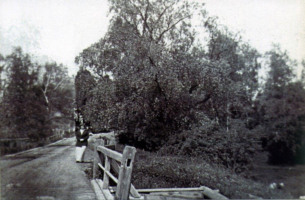1914. Лианозово. На мосту через старую канаву Самотеки по Владимирской улице