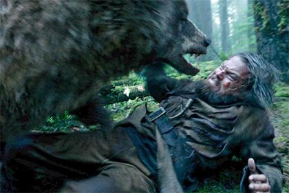 Безоружный каратист из Японии выжил после боя с медведем