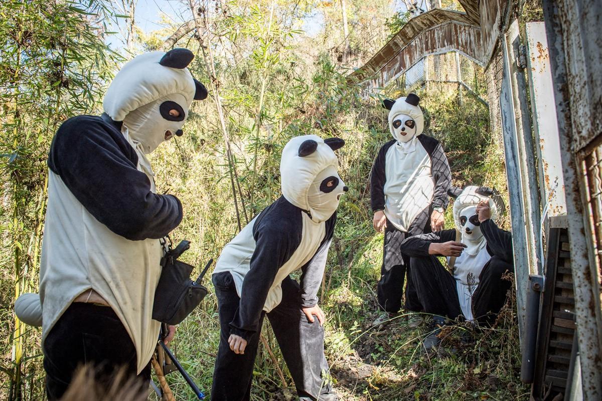 Чжан Хемин и другие смотрители ждут, когда панда выйдет из клетки. (Ami Vitale)