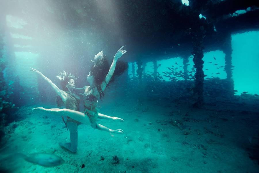 Enchanting Underwater Series