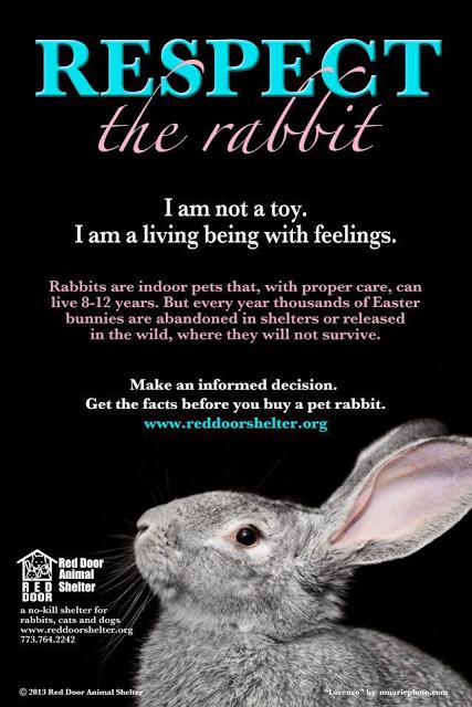 Уважайте кролика.png