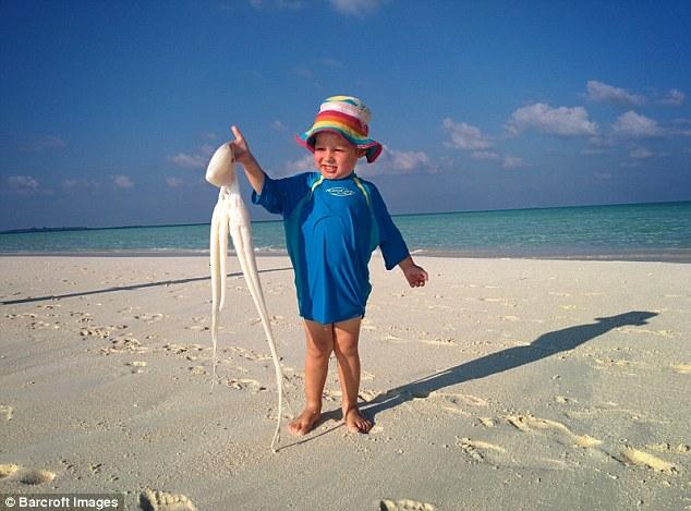 Генри держит кальмара на пляже на Мальдивах. Мысль не отдавать детей в школу возникла у Кэролайн, ко