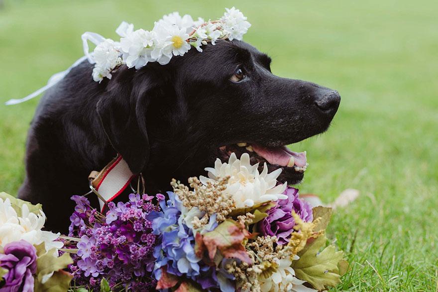 Однако на свадебной неделе у Чарли не было ни одного приступа. По словам Келли, его было не узнать.