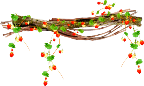 клубника декор