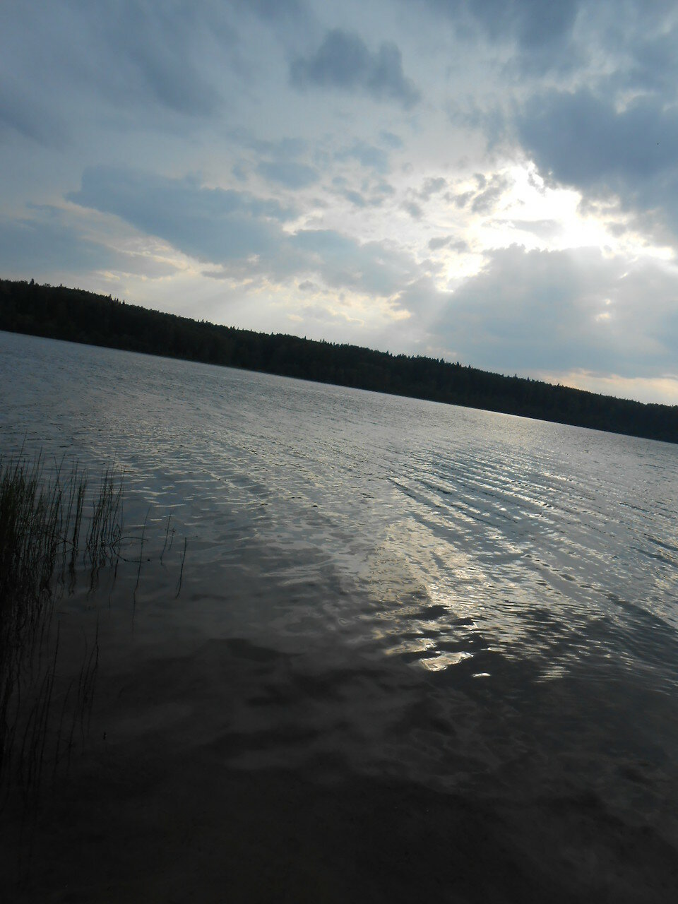 Восточный берег озера Ужин