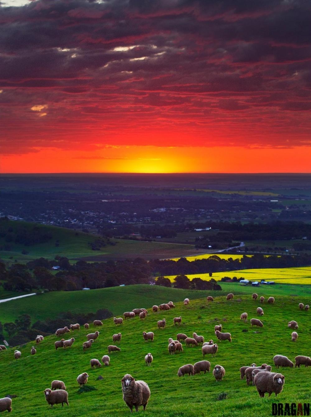 Закат над долиной Баросса.