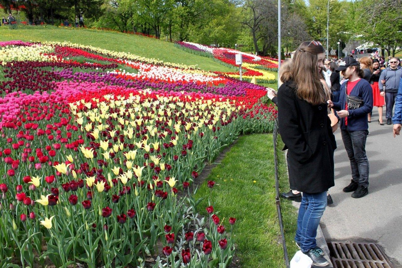 Посетители выставки тюльпанов