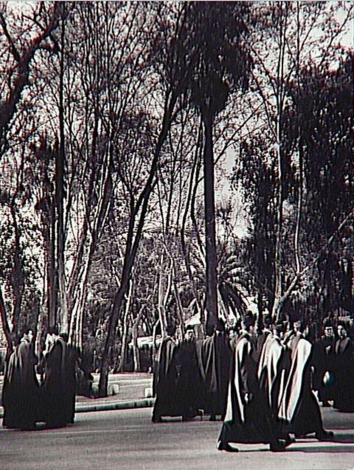 1951. Семинаристы в парке Марии-Луизы, Севилья