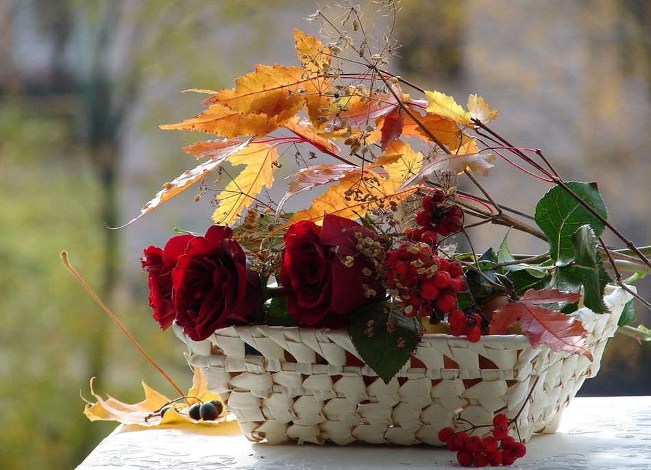 Надписью, открытка осенний букет цветов
