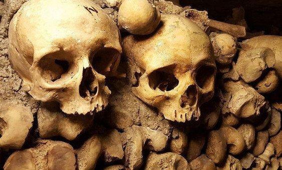 Ученые узнали, кто боится смерти меньше всех