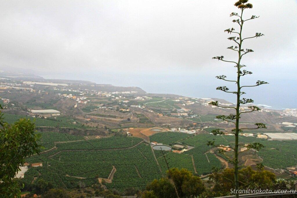 Гран Канария, Арукас
