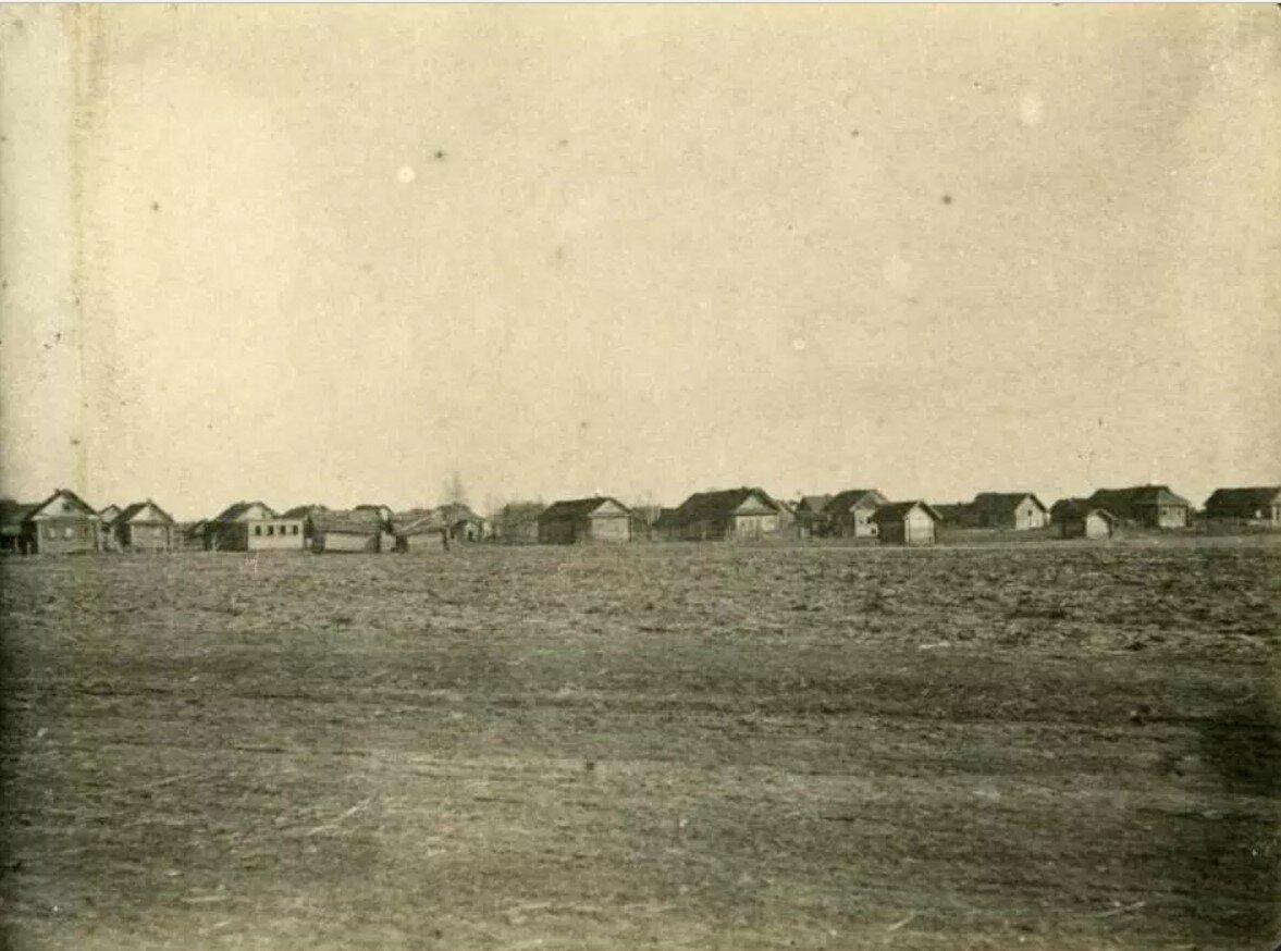 Выселенная деревня Осмерицы, зона затопления Рыбинского водохранилища