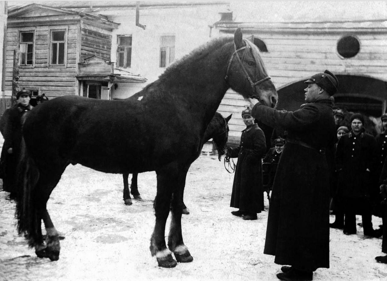 Касли. Пожарная команда НКВД. «Буян» излечивается, будучи купленным «из-под ножа».1934