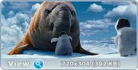 Делай ноги 2 / Happy Feet Two (2011) Blu-ray [3D, 2D] + BD Remux + BDRip 1080p [3D, 2D] / 720p + DVD5 + HDRip