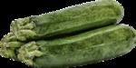 kimla_littlegarden_vegetable.png