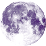 Lilas_Moonlight-Sonate_elmt (25).png