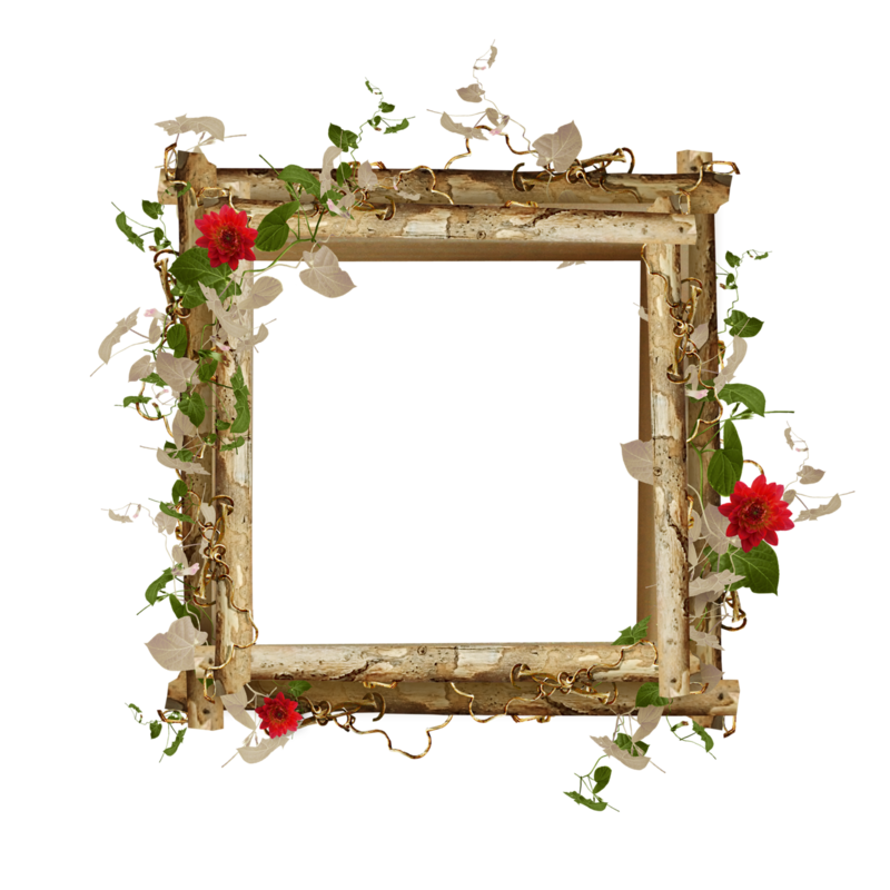 Sonia desings cientos de marcos png para decorar tus - Decorar fotos de navidad gratis ...