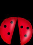 MRD_Toe-Tally-Faerie-ladybug2.png