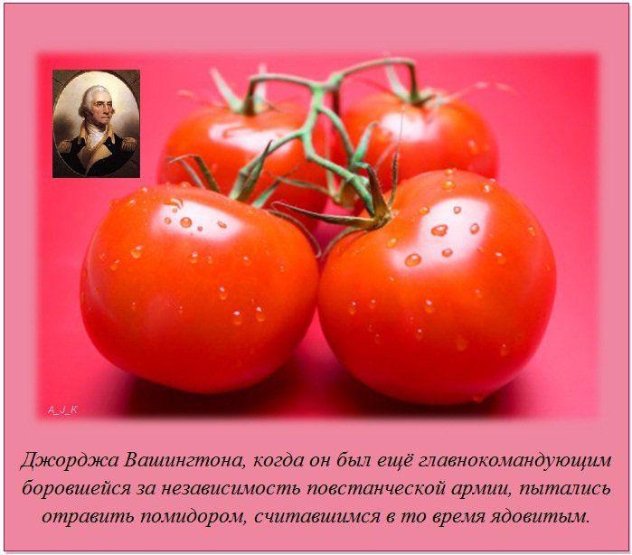 http://img-fotki.yandex.ru/get/6100/130422193.e8/0_76043_d24fa2d9_orig