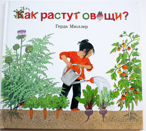 Как растут овощи (1 of 21).jpg