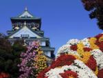 Япония,  весна  1.png