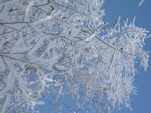 Последние дни зимы.