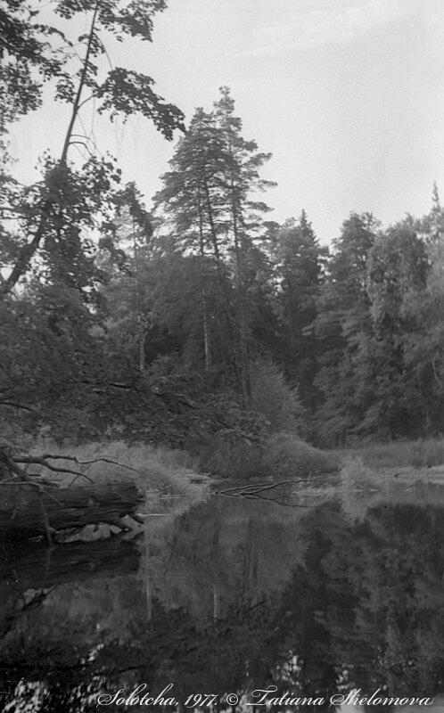 Лодочный поход по рекам и озерам Мещеры