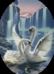 Птицы  разные  0_81ef3_3f58602c_S