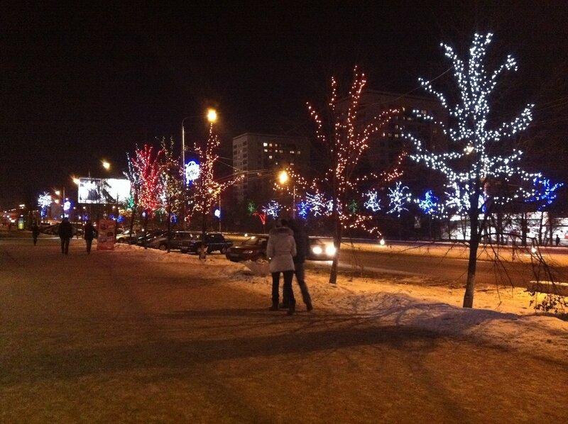 Смоковницы на проспекте Ленина