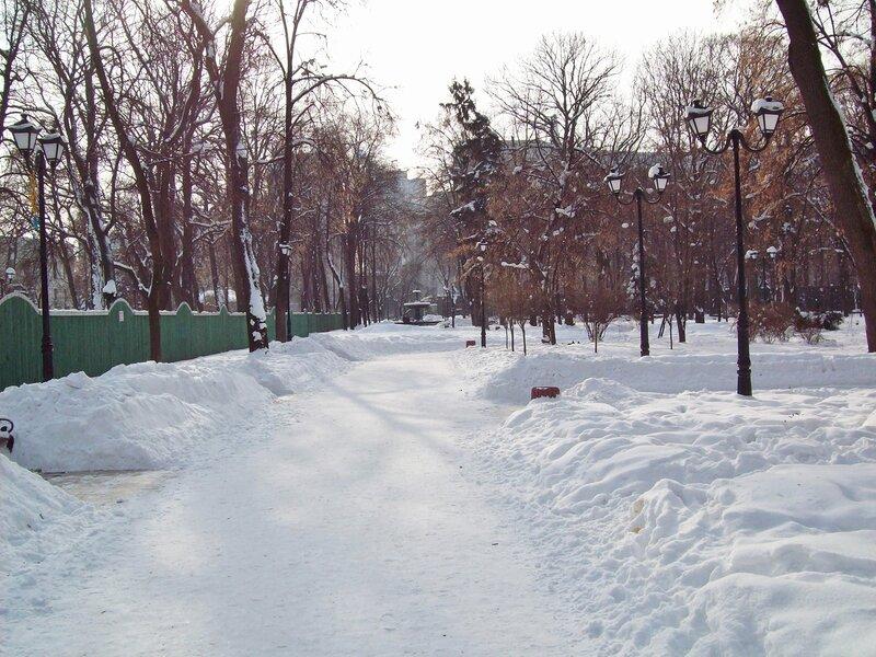 Аллея Мариинского парка зимой