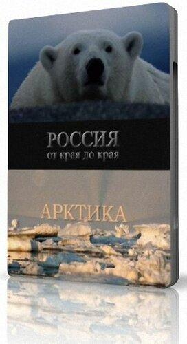 Дикая природа России. Арктика / Заполярье