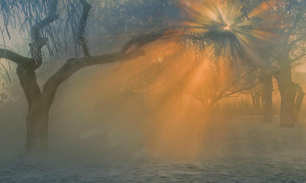 Зимние утренние туманы