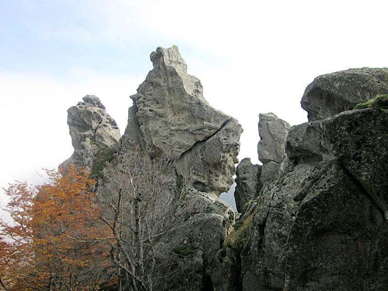 Фотограф Виктор Шалтаев, Ноябрь 2011, Кавказ, Индюк, Фотографии моих друзей