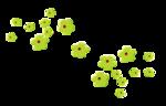تشكيلة فواصل راااائعه ومنوعة 0_8333d_9a648df7_S.j