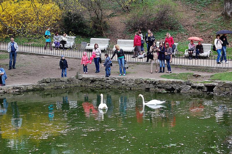 В Стрыйском парке