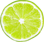 lisete_tropicalpunch_elements (36).png