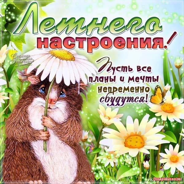 С первым днем лета! Летнего настроения! открытки фото рисунки картинки поздравления
