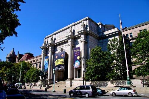 музей естественной истории, нью-йорк, сша