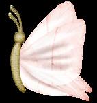 «PeachFacedLovebird» 0_82168_650f6b7e_S