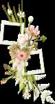 «PeachFacedLovebird» 0_8216c_20b5ffcb_S