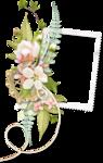 «PeachFacedLovebird» 0_8216e_3387e9a7_S