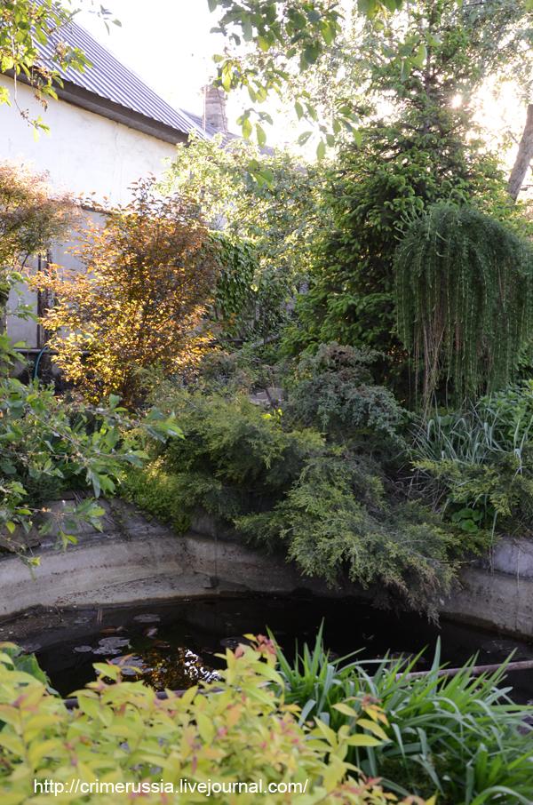 искусственный пруд в саду