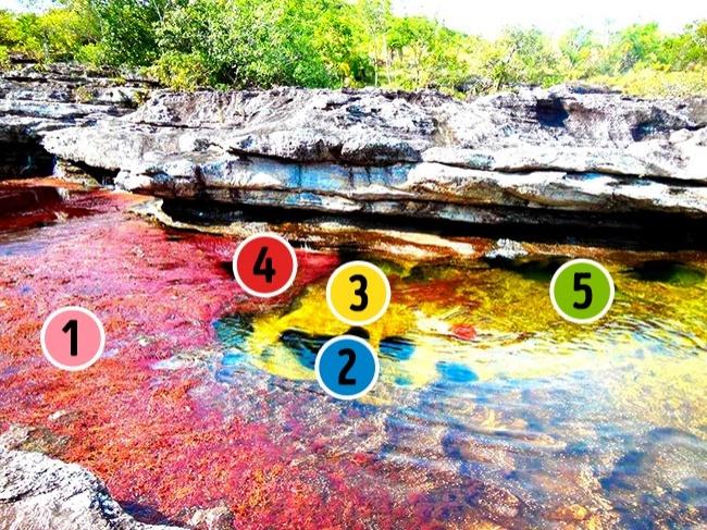 © wikimedia  Большую часть года река выглядит точно также, как илюбая другая, нолетом она ?