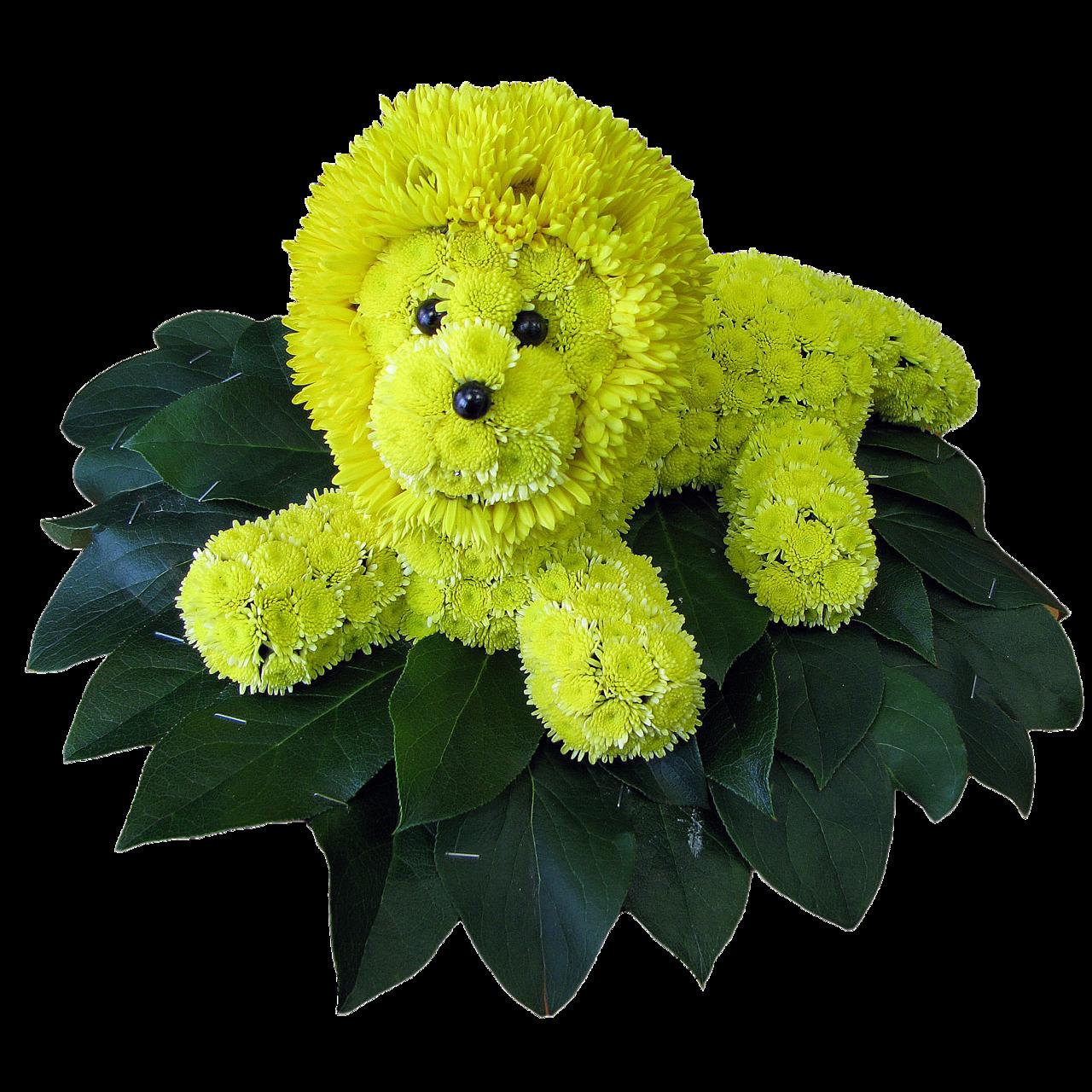 Открытки животные из цветов, цветы лилии