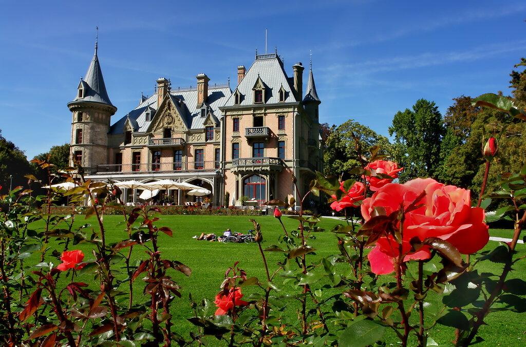 Замок Шадау в цветении роз