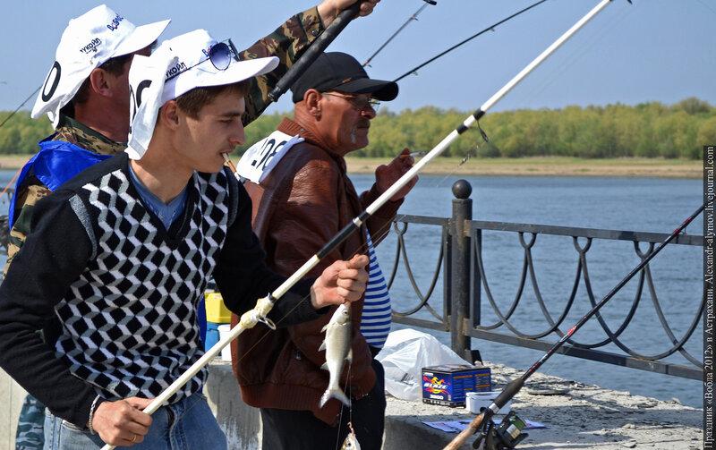 астраханская рыбалка вобла