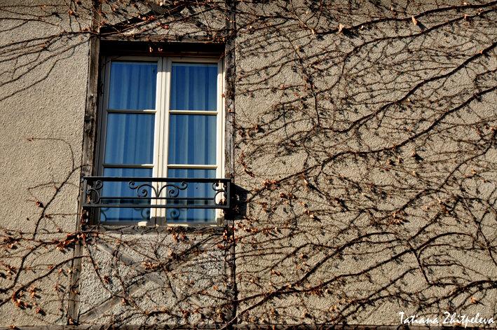 окна Каркассона3