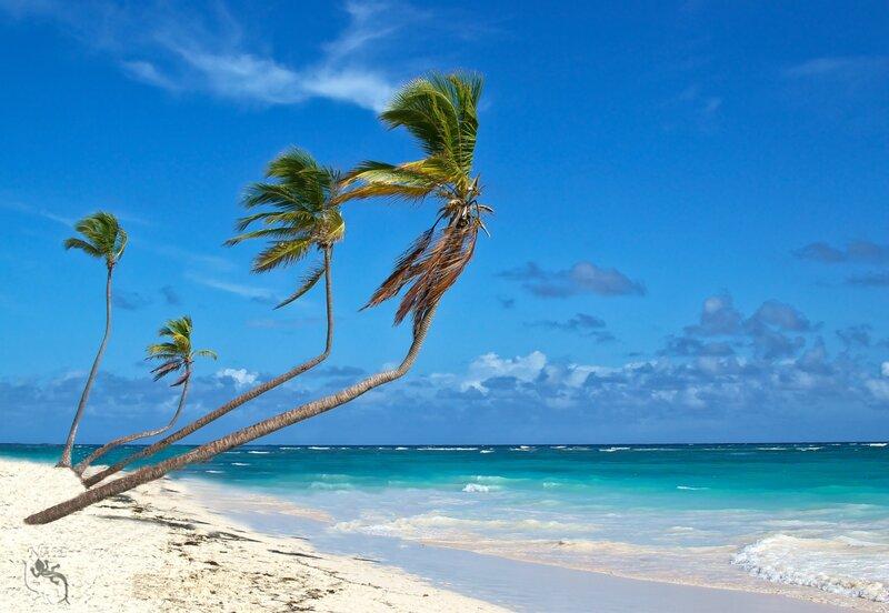 Доминиканская республика. Пляж Bavaro