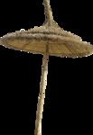 NLD I Sea You Addon Umbrella.png